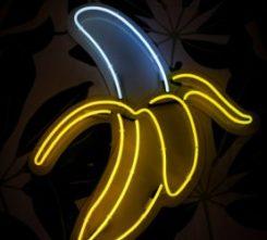 Amsterdam Banana Bar