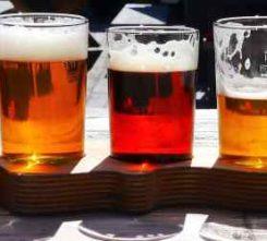 Dutch Beer Tasting