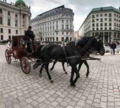 Hamburg Beer Coach