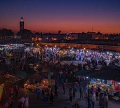 Stag Destination Marrakech