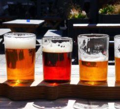 Tallinn Brewery Tour