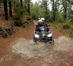 Tenerife Forest Quad Biking